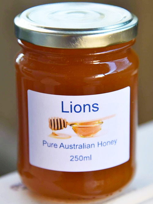 Lions Pure Honey 250ml